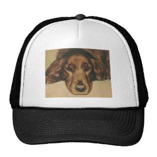 Brown Eyed Golden Irish Dog Trucker Hats