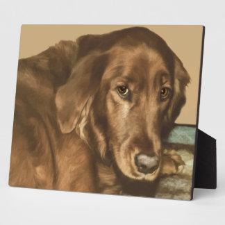Brown Eyed Golden Irish Dog Plaque