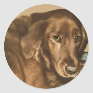 Brown Eyed Golden Irish Dog Classic Round Sticker