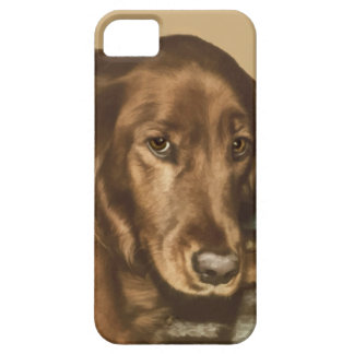 Brown Eyed Golden Irish Sporting Dog iPhone SE/5/5s Case