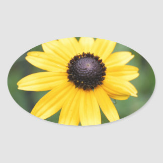 Brown Eyed Susan products Oval Sticker