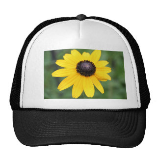 Brown Eyed Susan products Trucker Hat