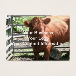 Brown cow business cards templates zazzle brown farm cow business card colourmoves