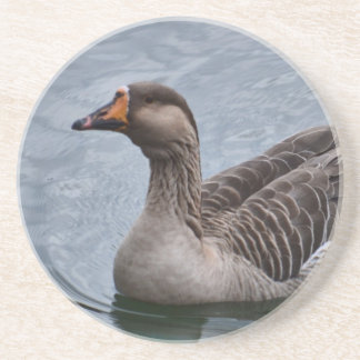 Brown Feathered Goose Drink Coasters