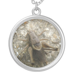 Brown Field Cricket Necklace