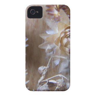 Brown Flowers mf iPhone 4 Covers