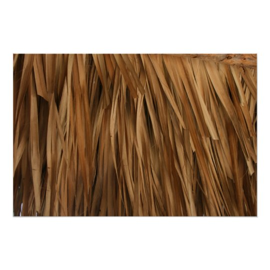 Brown frond roof pattern poster