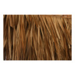 Brown frond roof pattern print