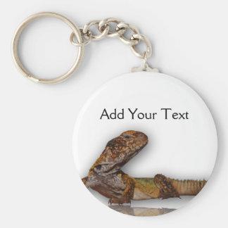 Brown Gecko on White Background Keychain