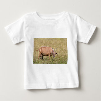 Brown goat in grass baby T-Shirt