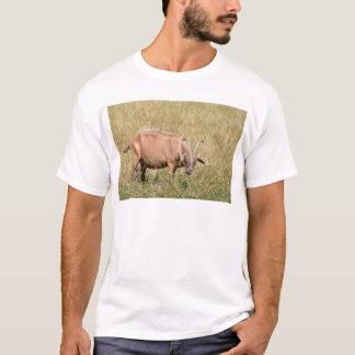 Brown goat in grass T-Shirt