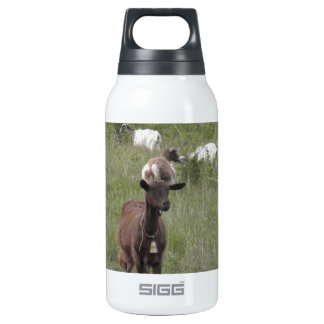Brown Goat Insulated Water Bottle