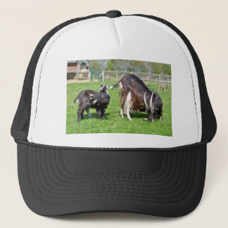 Brown goat with its kids trucker hat