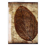 Brown Gold Fall Leaves Greeting Cards
