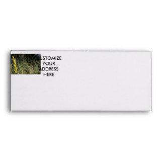 Brown green grass background design photo envelopes