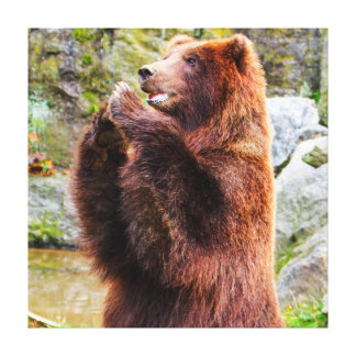 Brown Grizzly Bear Photo Canvas Print