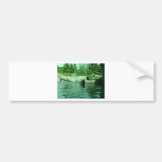 Brown Grizzly Bear swimming in a Pond by Trees Bumper Sticker