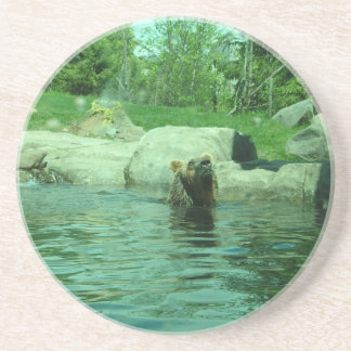 Brown Grizzly Bear swimming in a Pond by Trees Coaster
