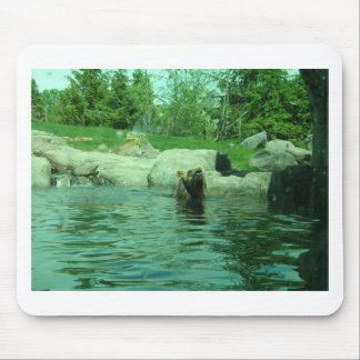 Brown Grizzly Bear swimming in a Pond by Trees Mouse Pad