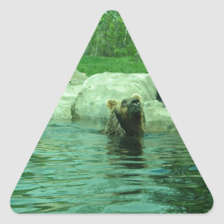 Brown Grizzly Bear swimming in a Pond by Trees Triangle Sticker