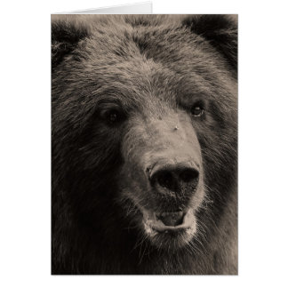 Brown Grizzly Bear Wildlife Photo Greeting Card