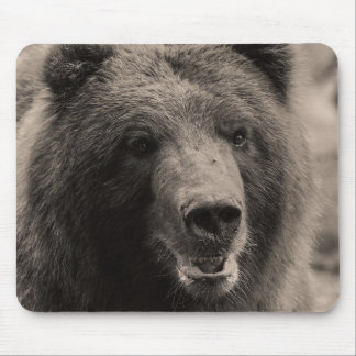 Brown Grizzly Bear Wildlife Photo Mouse Pad