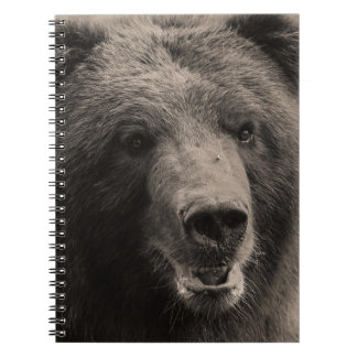Brown Grizzly Bear Wildlife Photo Journals
