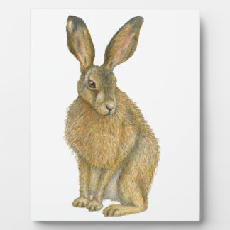 Brown Hare Plaque
