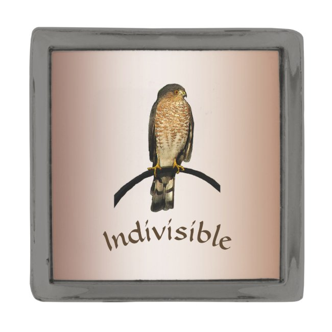 Brown Hawk Indivisible Lapel Pin