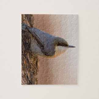 Brown-headed Nuthatch Jigsaw Puzzles