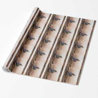 Brown-headed Nuthatch Wrapping Paper