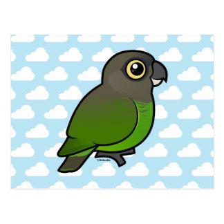 Brown-headed Parrot Postcard
