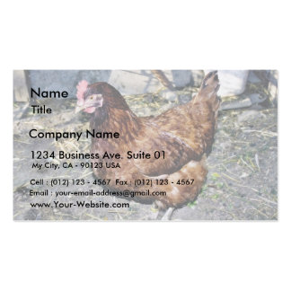 Brown Hen On The Back Yard Double-Sided Standard Business Cards (Pack Of 100)
