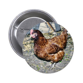 Brown Hen On The Back Yard Pinback Button