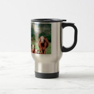 Brown hereford cattle travel mug