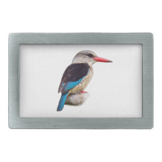 Brown-Hooded Kingfisher Belt Buckle