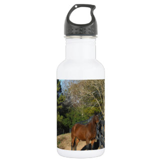 Brown Horse against a Fence 18oz Water Bottle