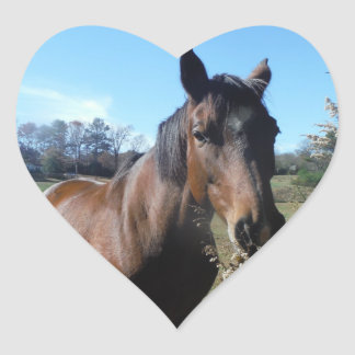 Brown Horse against blue sky Heart Sticker