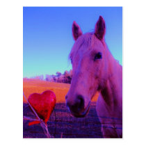 Brown Horse and Red Heart Postcard