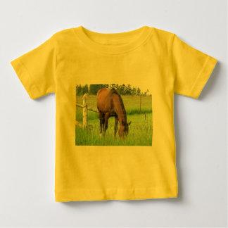 Brown Horse Eatting Grass in a Bright Green Field T Shirt