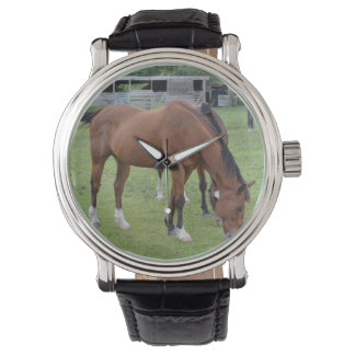 brown horse facing right grazing equine image.JPG Wristwatches