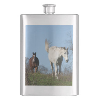 Brown horse follows white horse over a hill flask