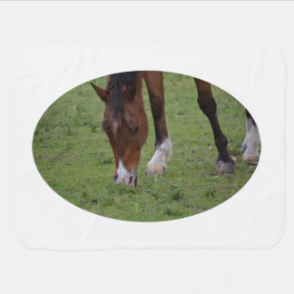 brown horse grazing land equine.JPG Baby Blanket