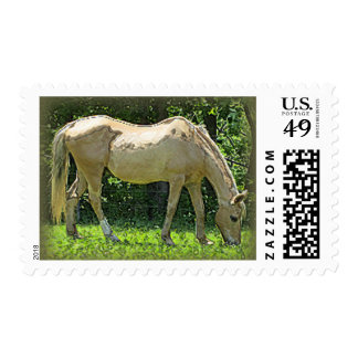 Brown horse, green pasture postage stamp