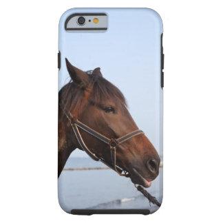 Brown horse head tough iPhone 6 case