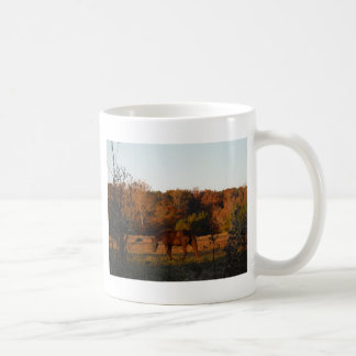 Brown horse in a Autumn feild Coffee Mug