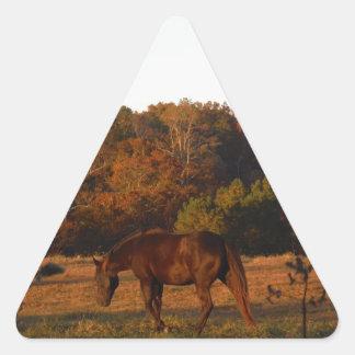 Brown horse in a Autumn feild Triangle Sticker