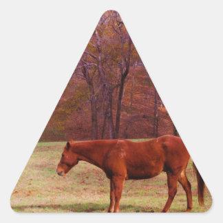 Brown horse in a grass field triangle sticker