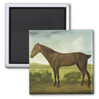 Brown Horse in a Hilly Landscape, c.1780-1800 (oil 2 Inch Square Magnet
