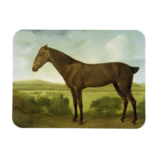 Brown Horse in a Hilly Landscape, c.1780-1800 (oil Rectangular Photo Magnet